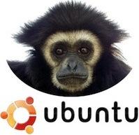 ubuntu-gibbon